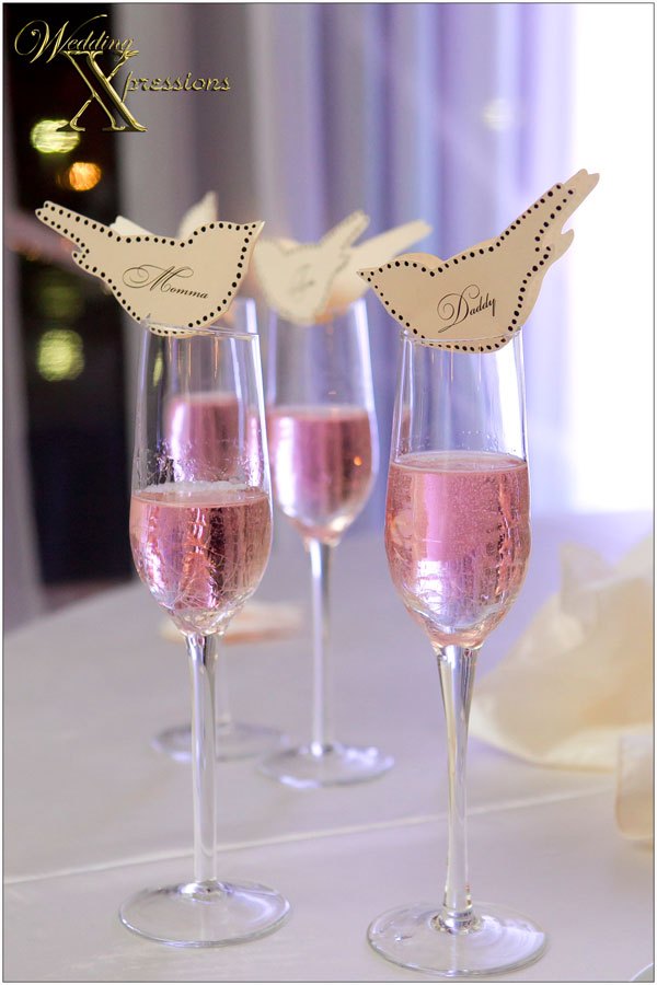 Wedding toast champagne glasses at Grace Gardens