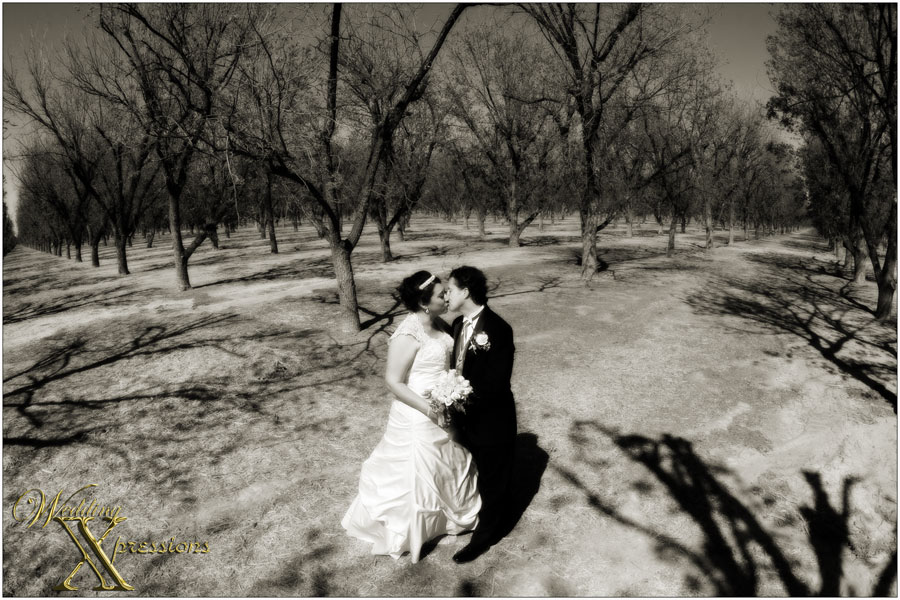 pecan orchards wedding photography