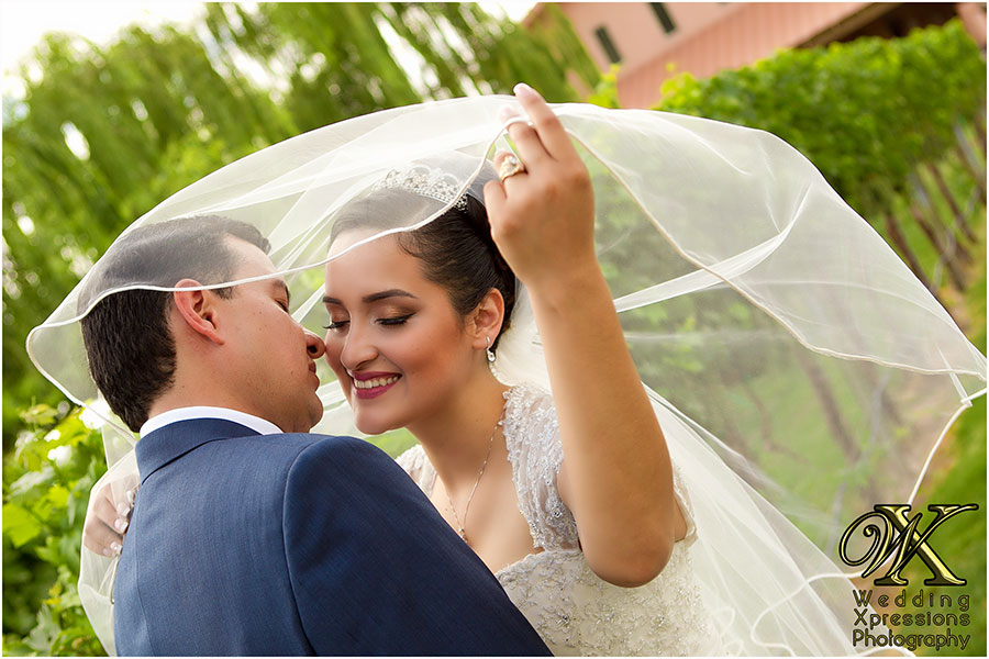 wedding couple with veil over head