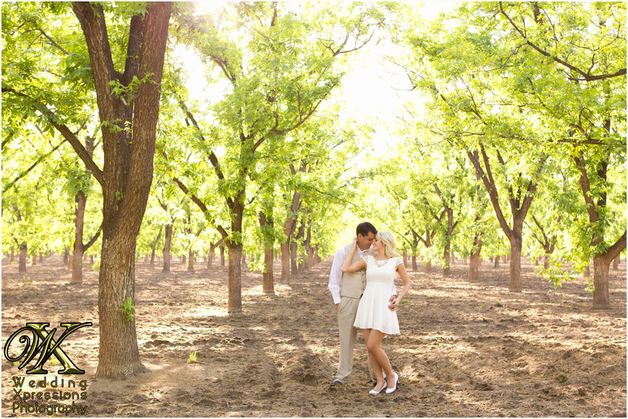 pecan orchards engagement session