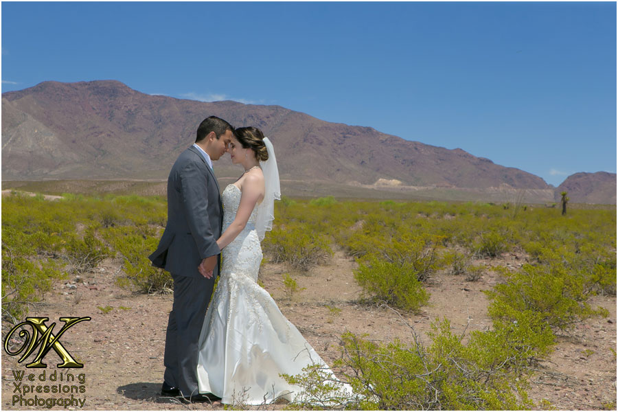 wedding-photographer-14