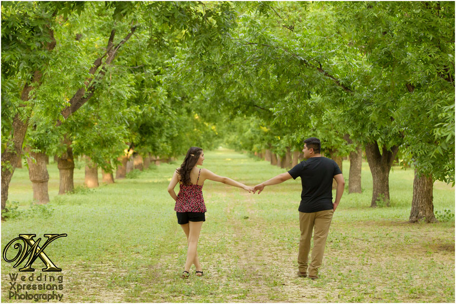 couple in pecan orchards