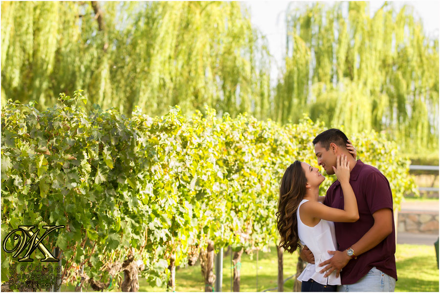 Zin Valley Winery engagement photography