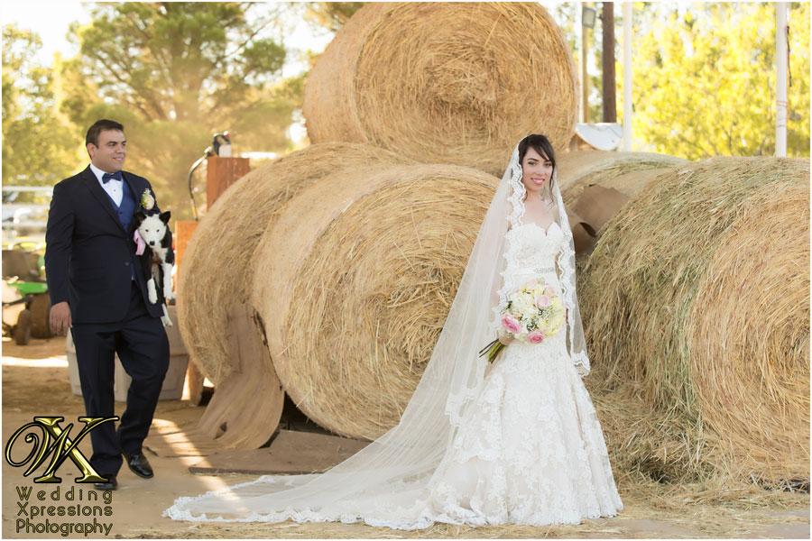 groom with bride's wedding gift
