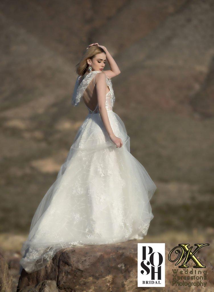 Posh Bridal and Wedding Xpressions Photography