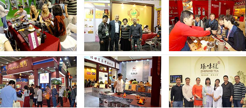 Shanghai International Tea Trade Expo 1