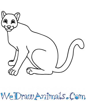 How To Draw A Cartoon Mountain Lion