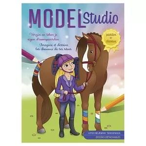 Deltas Model studio paarden