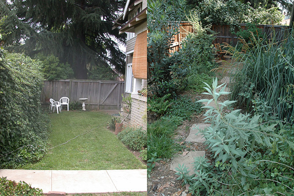 Before-After_Wdld