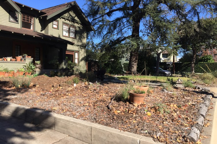 Area cleared in preparation for flagstone path installation (Dec '15)