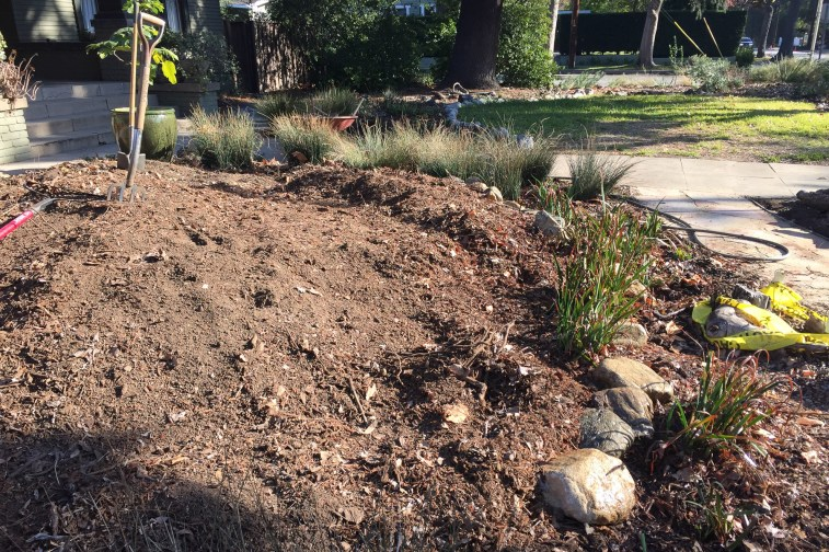 Soil needs to be leveled for future vegetable garden (Dec. '15)
