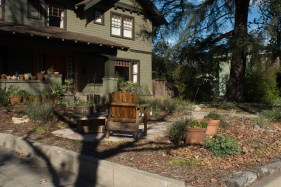 Front yard (Feb '16)