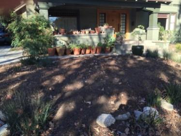 Ready to plant vegetable garden (1/2/16)