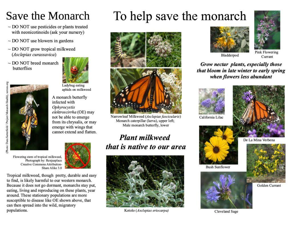Monarch Brochure, pg 2
