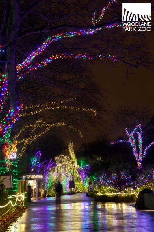 Zoo Light Prices