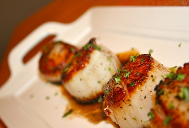 Image result for seared scallops