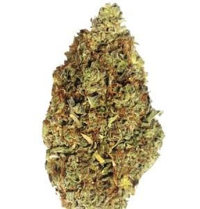 Weed Seeds Australia