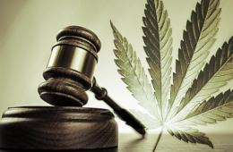 marijuana legalisation