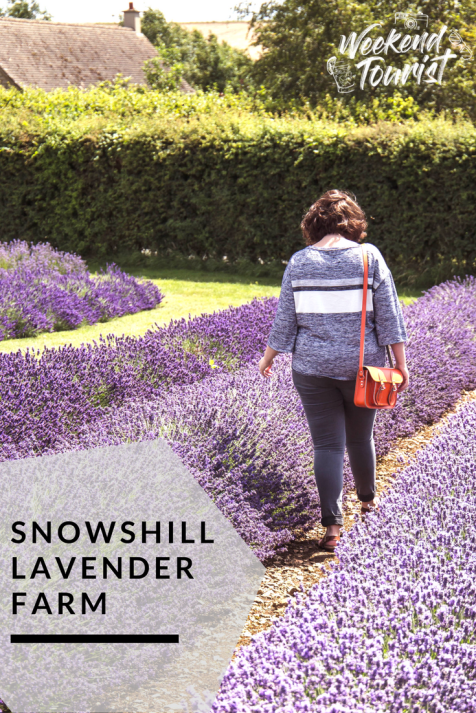 Cotswold Lavender with Elizabeth Flower Photography - The Weekend