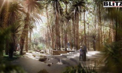 Crown Prince Muhammad Bin Salman, Arabian Peninsula, Saudi Arabia