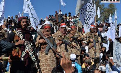 Al-Qaeda in the Islamic Maghreb, AQIM, Al Aqsa mosque, Palestinian holy sites