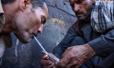 Afghanistan, Afghan, Counter Narcotics Police, Drug