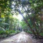 Why Costa Rica has the best roads in the world