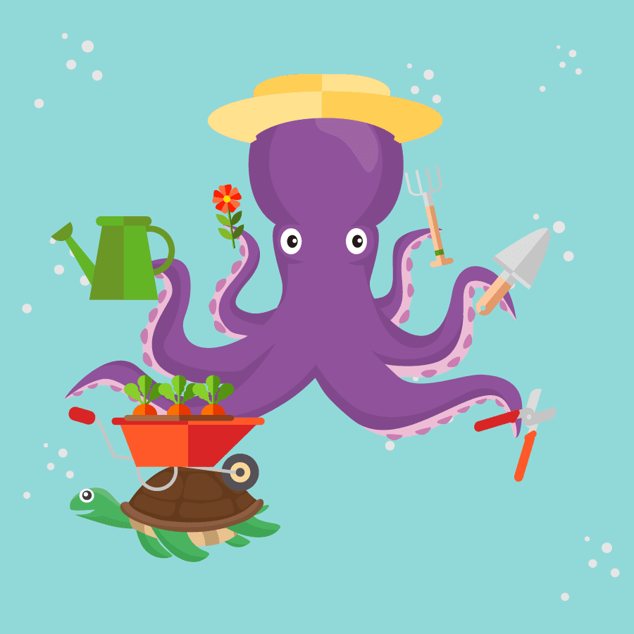 A Note To Ringo Starr From The Association Of Octopus
