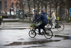Weelz-Trip-Copenhague-Cyclistes-Urbains (6)