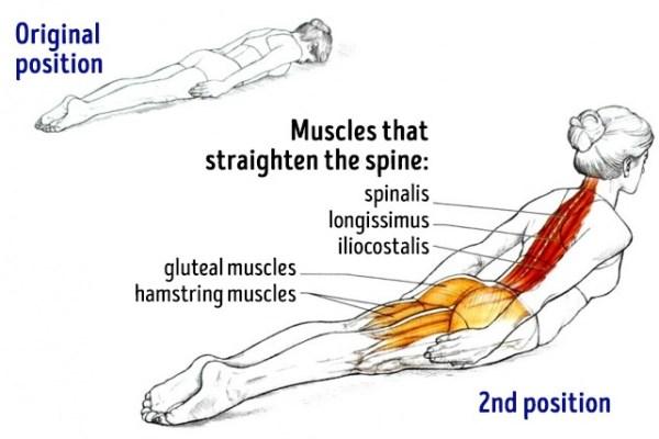 Rugversterkende oefeningen voor een nog sterkere rug