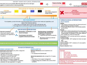 Nieuwe KCE richtlijnen rond rugpijn