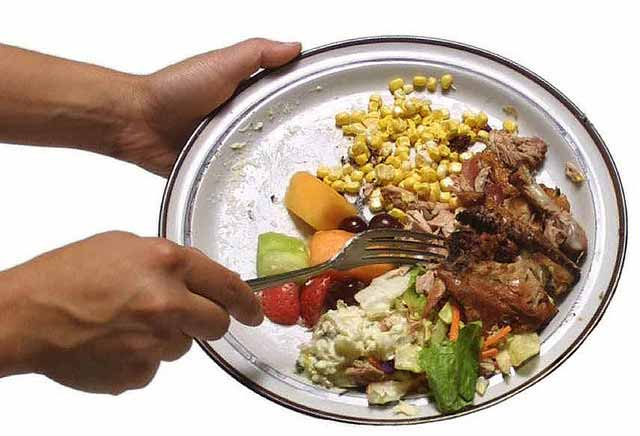 Image result for food waste plate