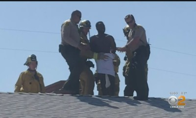 Naked, Rambling Man Arrested For Burglary After Being Stuck In Chimney