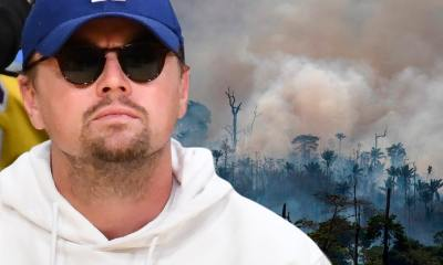 Brazil's President Accuses Leo DiCaprio of Funding Amazon Forest Fires