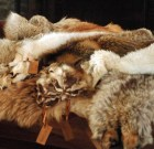 WeHo Tightens (and Loosens) Its Ban on the Sale of Fur