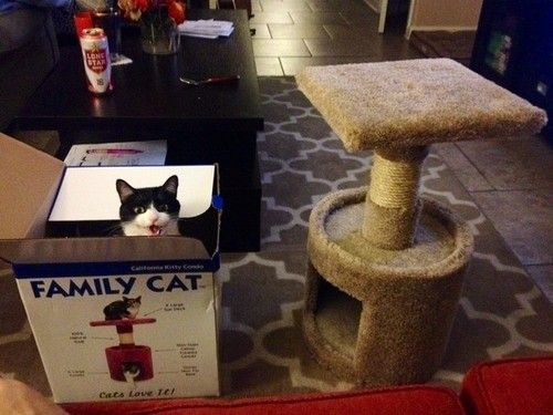 Well, the box is correctly labeled, at least.