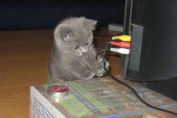 Fixin ur computer