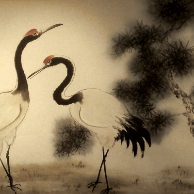 Red-crowned crane couple