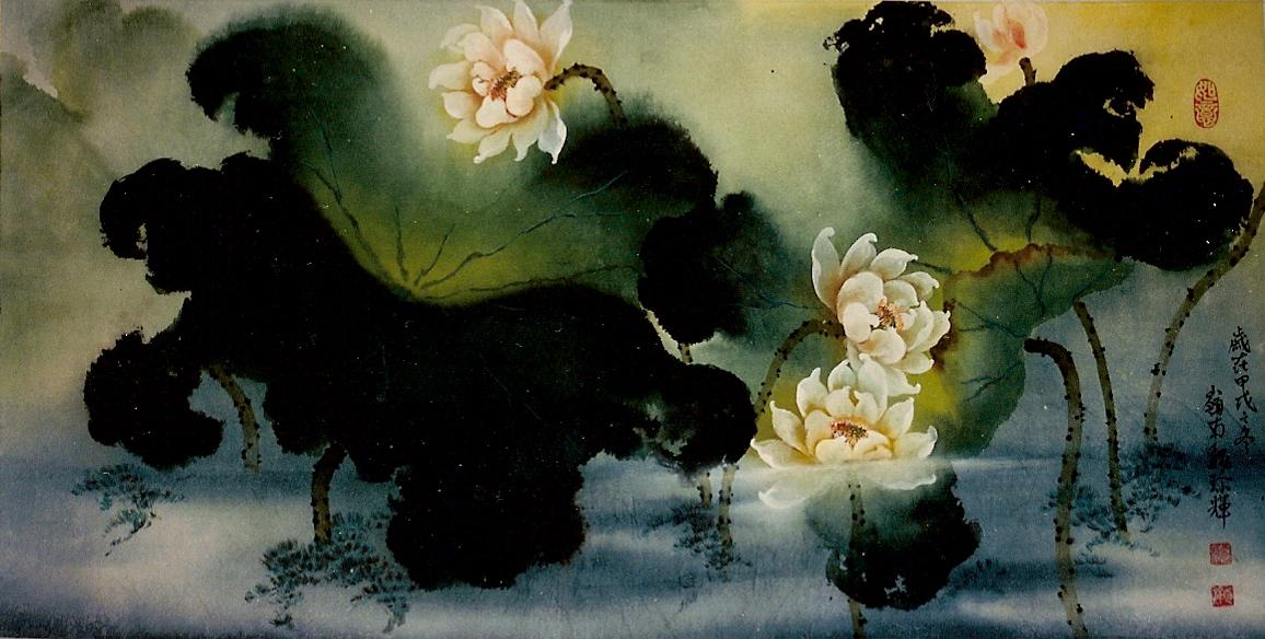 Lotus 荷花