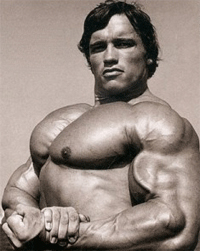 arnold chest muscles