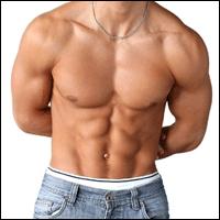 Poids et haltères: Abs – Exercices d'entraînement de base pour Six Pack Abs   – abdo
