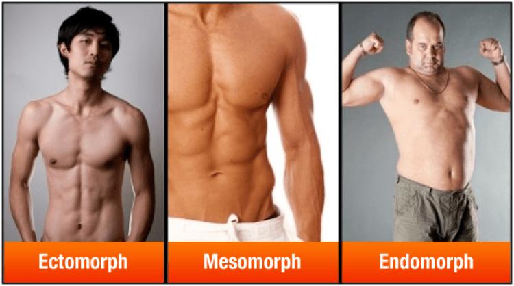 Somantotype Men