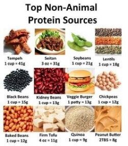 Protein: Your Secret Weapon for Weight Loss