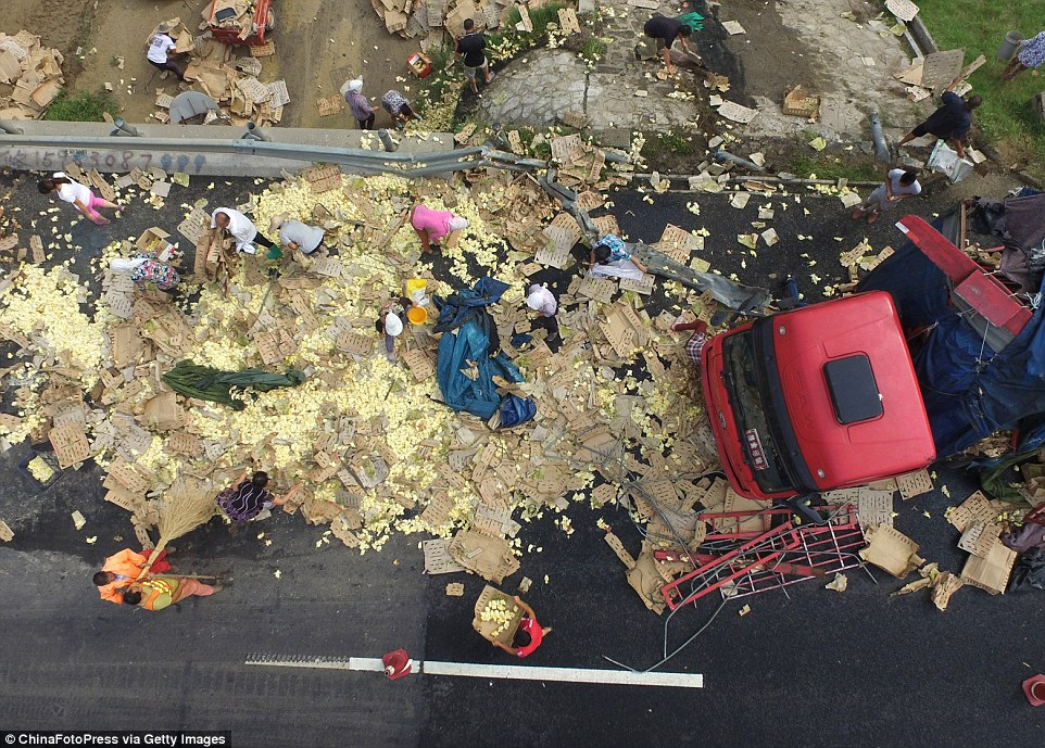 Aerial view of the overturned truck and loose chicks