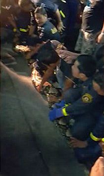 Firefighters holding onto the giant snake