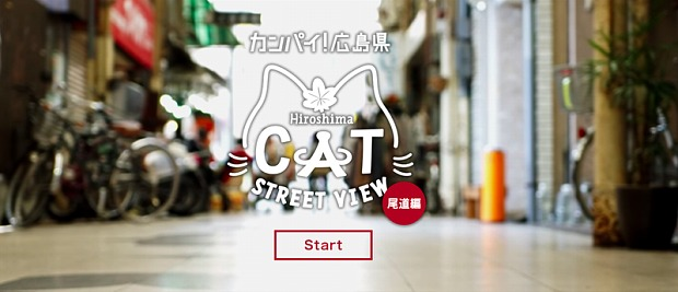 Cat Street View Homepage
