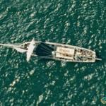 Sailboat, Port Jackson, Australia