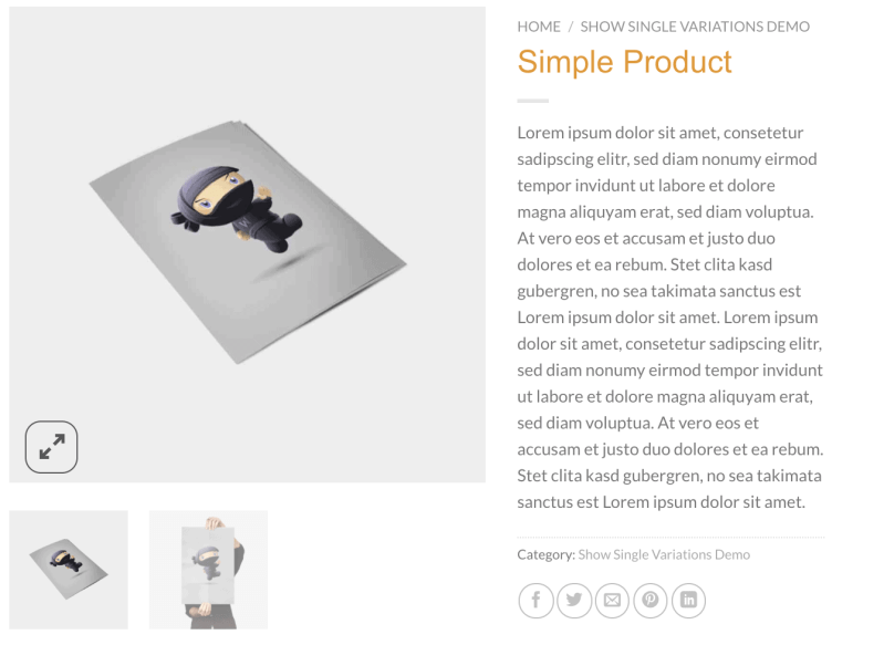 WooCommerce Product Gallery Lightbox & Zoom
