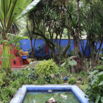 Photo: Casa Azul, Mexico City, 2014 / Via NYBG