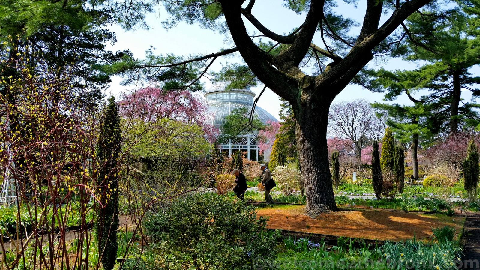 New York Botanical Garden Listed As One Of World S 17 Most Beautiful Gardens Welcome2thebronx